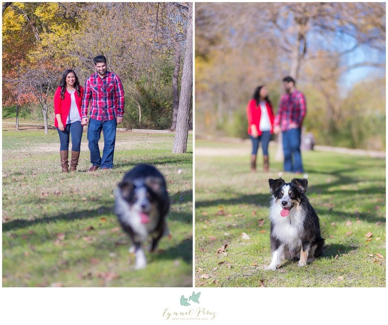 dallas-Fort-worth-wedding-photographer-engagement-photos-with-dog
