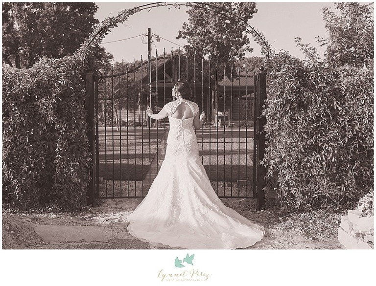Dallas-wedding-photography-at-A-and-M-Gardens-in-Azle-TX-0355.jpg