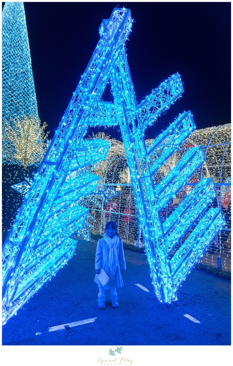 dallas-enchant-christmas-2017-christmas-light-maze-0062