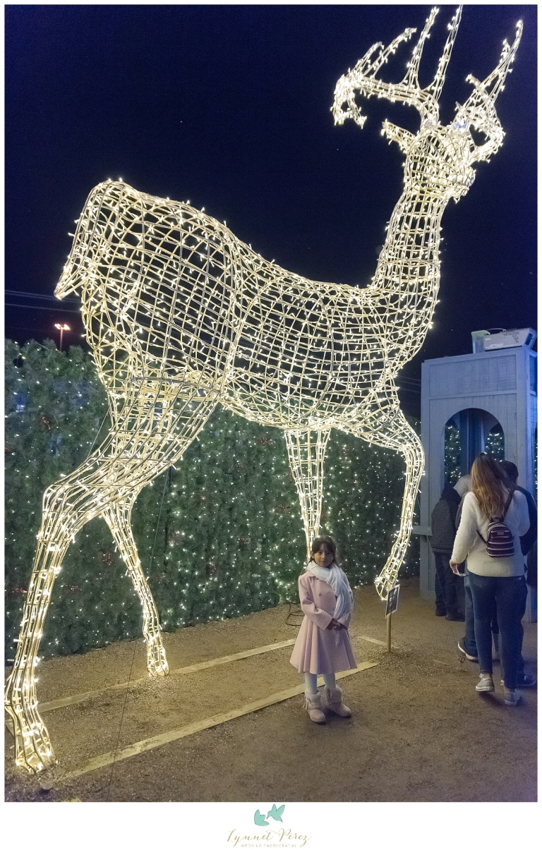 dallas-enchant-christmas-2017-christmas-light-maze-0214