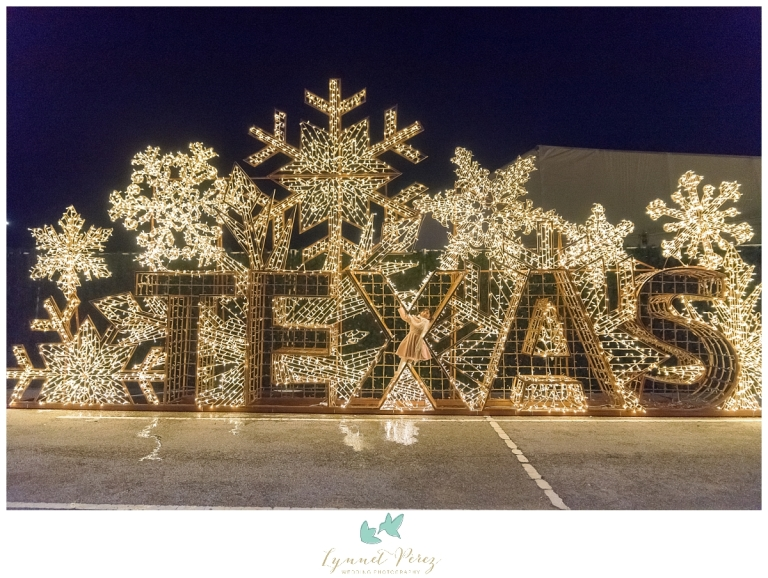 dallas-enchant-christmas-2017-christmas-light-maze-0469